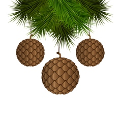 Cones like christmas balls hanging on pine vector