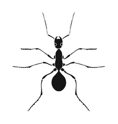 Insect ant single icon in black style for design vector