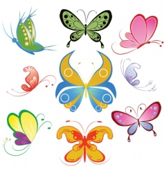 Collection of different multicolored butterfly vector