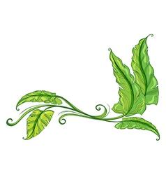 A green border vector image vector image