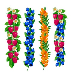 Berries ornament set vector image vector image