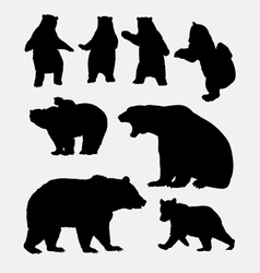 Bear wild animal silhouette vector