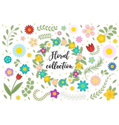 Flowers and leaves set floral collection isolated vector