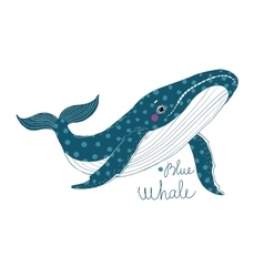 Big beautiful whale vector image