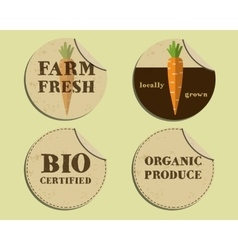 Stylish farm fresh label and sticker template with vector