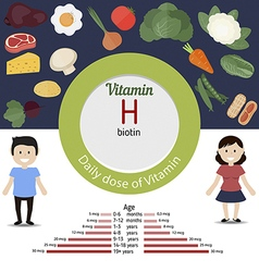 Vitamin h infographic vector
