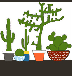 colorful set with cactus in pot vector image vector image