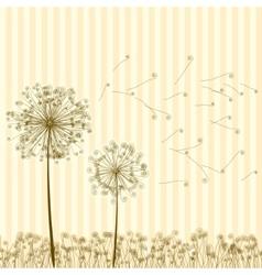 Vintage two dandelions in wind EPS8 vector image