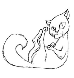 Sly cartoon cat sitting in the corner vector