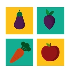 Collection organic tasty fruit vegetable vector