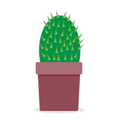 Plant cactus isolated vector