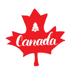 Canada hand drawn maple leaf with calligraphy vector