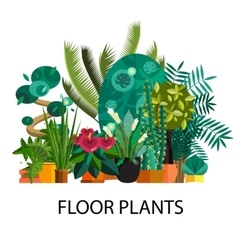 Tropical plants Set of flat potted houseplants vector image vector image