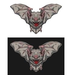 Vampire bat in flight vector image