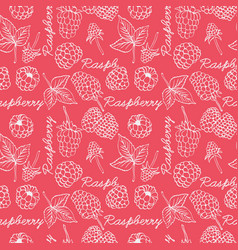 raspberry graphic color seamless pattern vector image vector image