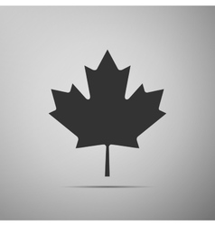Canadian maple leaf icon on grey background adobe vector
