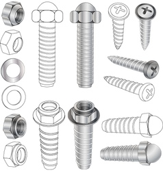 The complete set bolts and nuts vector image vector image