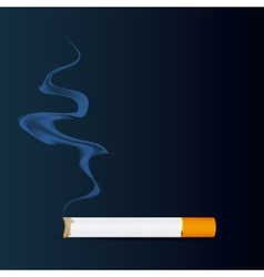 Cigarette icon design vector image