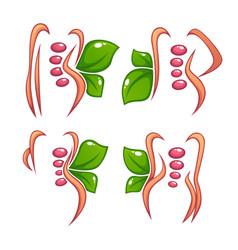 Women health beauty and treatment symbols logo vector