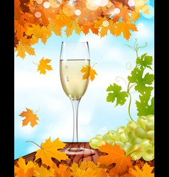 sparkling wine background vector image