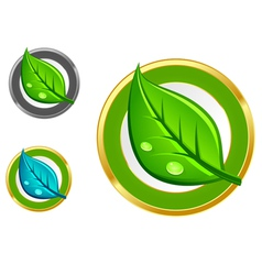 Leaf emblems vector