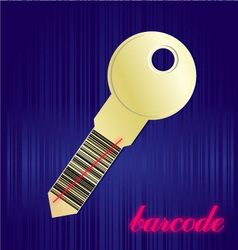 Barcode key vector
