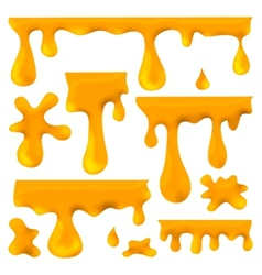 Honey blots splashes and smudges vector