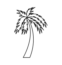 Tree palm beach isolated icon vector