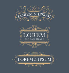 Luxury crown frame modern logos flourishes vector