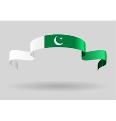 Pakistani flag background vector image vector image
