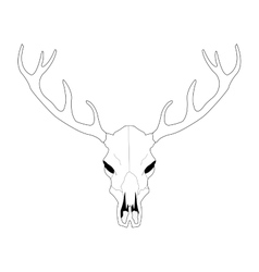 Deer skull line art vector