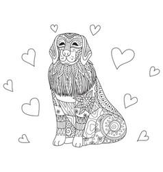 Labrador coloring vector