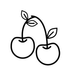 Line delicious cherry healthy fruit vector