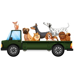 Truck and dogs vector image vector image