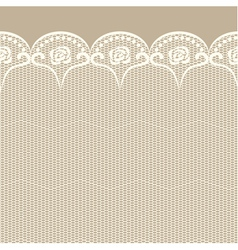 Seamless lacy border vector