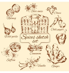 Spices Sketch Set vector image
