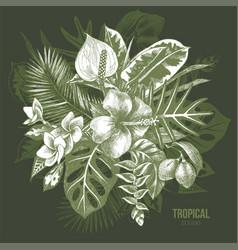 Hand drawn tropical plants vector