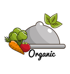 vegan food icon stock vector image vector image