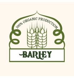 Barley design vector
