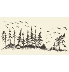 Hand drawn landscape fir forest migratory birds vector