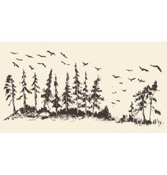 Hand drawn landscape fir forest migratory birds vector image
