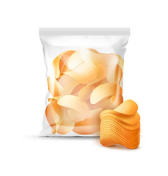 Sealed bag for package design full of chips vector