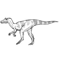 allosaurus vector image