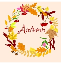 Autumnal frame with leaves and berries vector