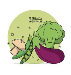Colorful poster fresh vegetables mushroom peas vector