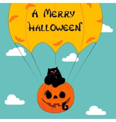 Halloween greeting with funny cat vector image vector image