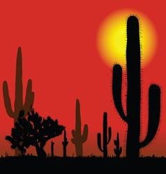 Cactus in desert vector