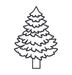 Pine tree of christmas season design vector