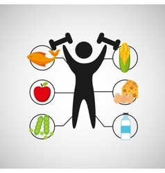 Sport man weight lifting nutrition health vector