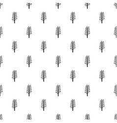 spica pattern vector image